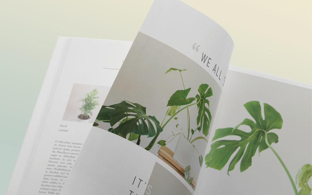 Katalog til livstilsmediet Voilà